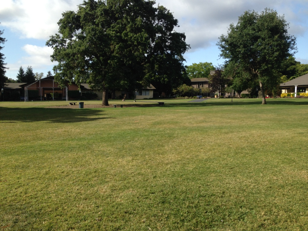 Menlo Park Colllege